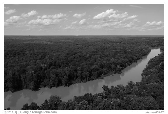 Aerial view of Congaree River. Congaree National Park (black and white)
