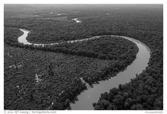 Aerial view of bends of the Congaree River. Congaree National Park (black and white)
