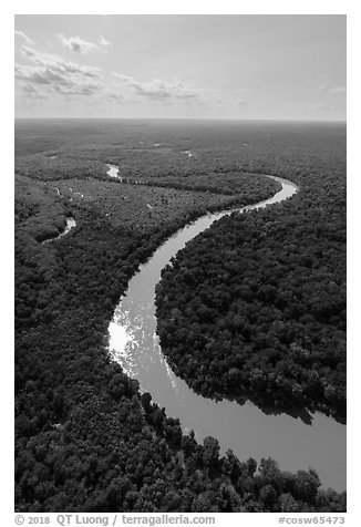 Aerial view of Congaree River with meanders. Congaree National Park (black and white)