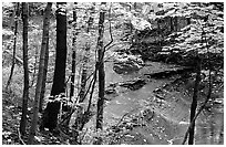 Trees and creek with Cascades near Bridalveil falls. Cuyahoga Valley National Park, Ohio, USA. (black and white)