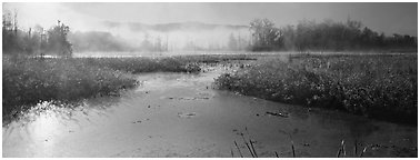 Misty marsh scenery, early morning. Cuyahoga Valley National Park (Panoramic black and white)