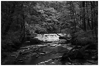 Deerlick Creek with cascade, Bedford Reservation. Cuyahoga Valley National Park ( black and white)
