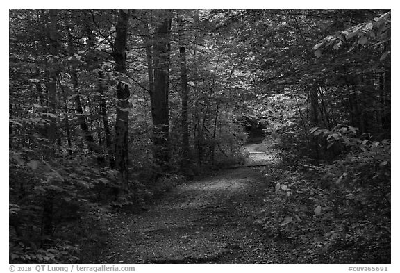 Trail. Cuyahoga Valley National Park (black and white)