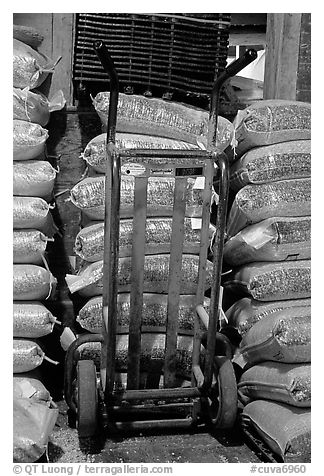 Bags of bird seeds in Wilson Feed Mill. Cuyahoga Valley National Park (black and white)