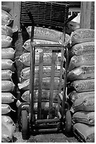 Bags of bird seeds in Wilson feed mill. Cuyahoga Valley National Park, Ohio, USA. (black and white)