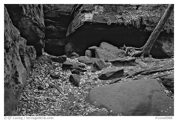Ice box cave in a cliff at The Ledges. Cuyahoga Valley National Park (black and white)