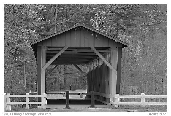 Everett Road covered bridge. Cuyahoga Valley National Park (black and white)