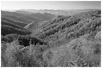 Vista of valley and mountains in fall foliage, morning, North Carolina. Great Smoky Mountains National Park ( black and white)