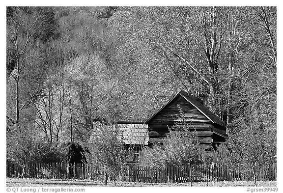 Historic log building, Mountain Farm Museum, North Carolina. Great Smoky Mountains National Park (black and white)