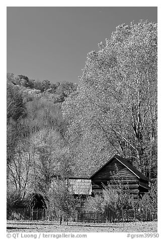 Historic log building in fall, Oconaluftee Mountain Farm, North Carolina. Great Smoky Mountains National Park (black and white)