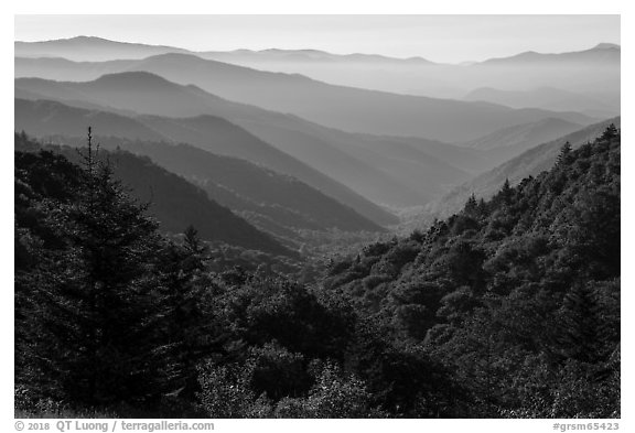 Oconaluftee Valley, early morning, North Carolina. Great Smoky Mountains National Park (black and white)