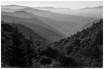 Oconaluftee Valley, early morning, North Carolina. Great Smoky Mountains National Park ( black and white)