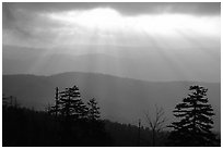 Sunrays over ridges, early morning, North Carolina. Great Smoky Mountains National Park, USA. (black and white)