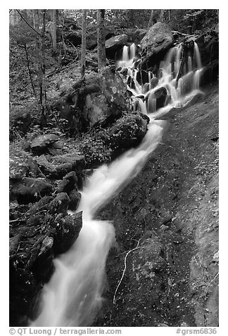 Small cascading stream, Treemont, Tennessee. Great Smoky Mountains National Park (black and white)
