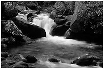 Cascade pothole, Roaring Fork River, Tennessee. Great Smoky Mountains National Park, USA. (black and white)