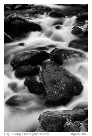 Stream flowing over mossy boulders, Roaring Fork, Tennessee. Great Smoky Mountains National Park (black and white)