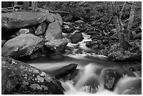 Roaring Fork River Cascades and boulders, Tennessee. Great Smoky Mountains National Park ( black and white)