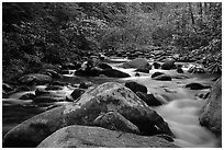 River cascading along mossy boulders, Roaring Fork, Tennessee. Great Smoky Mountains National Park ( black and white)