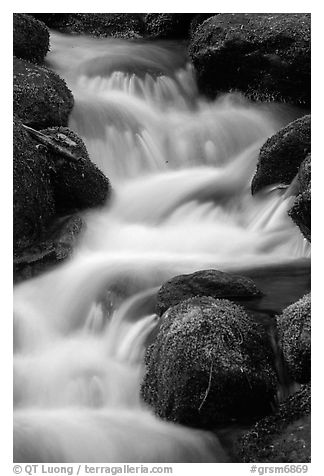 River Cascading, Roaring Fork, Tennessee. Great Smoky Mountains National Park (black and white)
