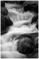 River Cascading, Roaring Fork, Tennessee. Great Smoky Mountains National Park, USA. (black and white)