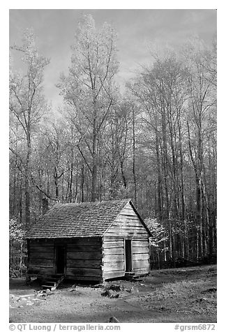 Historic log Cabin, Roaring Fork, Tennessee. Great Smoky Mountains National Park (black and white)