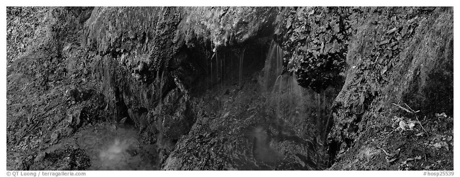 Cascade over tufa spring. Hot Springs National Park (black and white)