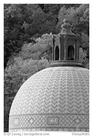 Dome of Quapaw Baths. Hot Springs National Park (black and white)