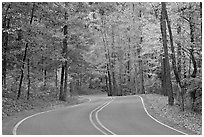 Windy road and fall colors on West Mountain. Hot Springs National Park, Arkansas, USA. (black and white)