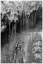 Hot springs water flowing over tufa terrace. Hot Springs National Park, Arkansas, USA. (black and white)