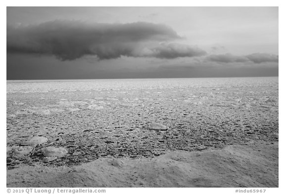 Frozen Lake Michigan from base of Mount Baldy. Indiana Dunes National Park (black and white)