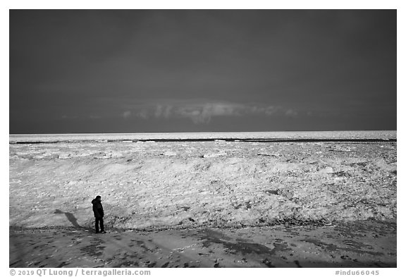 Visitor looking, Mt Baldy Beach. Indiana Dunes National Park (black and white)