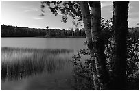 West Chickenbone lake at dusk. Isle Royale National Park, Michigan, USA. (black and white)