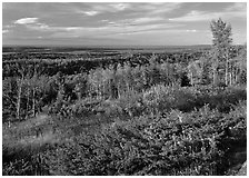 Lake Ojibway from Greenstone ridge in autumn. Isle Royale National Park ( black and white)