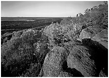 Mount Franklin outcrop, trees, and Lake Superior in the distance. Isle Royale National Park ( black and white)