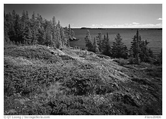 Rock Harbor lakeshore. Isle Royale National Park (black and white)
