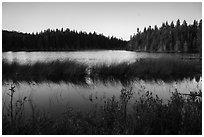 Hidden Lake. Isle Royale National Park ( black and white)