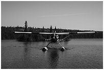 Sea Plane approaching, Tobin Harbor. Isle Royale National Park ( black and white)