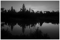 Tree ridge at sunset, Moskey Basin. Isle Royale National Park ( black and white)