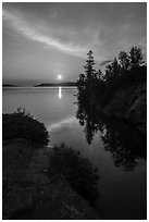 Sunrise and trees, Moskey Basin. Isle Royale National Park ( black and white)