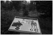 Moose and wolves interpretive sign. Isle Royale National Park ( black and white)