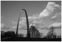 Arch, trees and clouds, winter late afternoon. Gateway Arch National Park ( black and white)