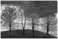 Bare trees and drained North Pond. Gateway Arch National Park ( black and white)