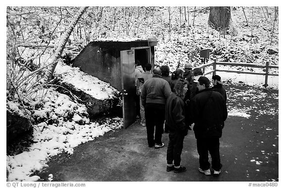 Entrance of Frozen Niagara section of the cave in winter. Mammoth Cave National Park (black and white)
