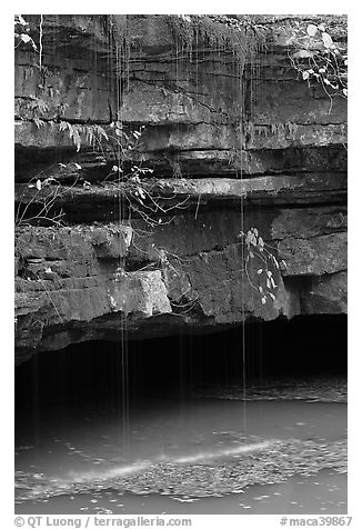 Water drips over limestone ledges and Styx. Mammoth Cave National Park (black and white)