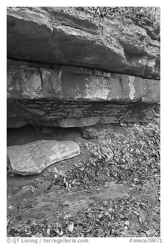 Limestone slabs and overhangs. Mammoth Cave National Park (black and white)