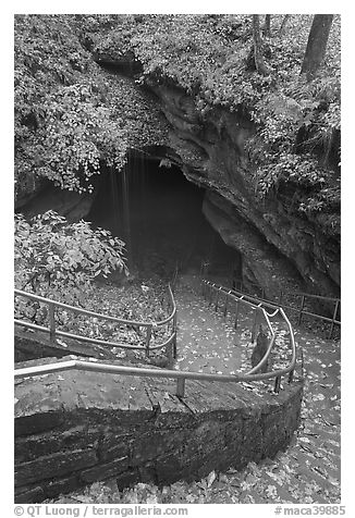 Steps and railing leading down to historical cave entrance. Mammoth Cave National Park (black and white)
