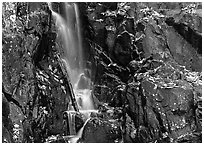 Cascade over dark rock with with fallen leaves. Shenandoah National Park, Virginia, USA. (black and white)