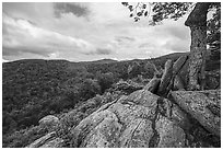 Rocky outcrop, Hazel Mountain Overlook. Shenandoah National Park ( black and white)