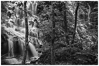 Middle Whiteoak falls. Shenandoah National Park ( black and white)