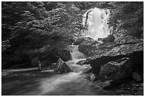 Whiteoak falls. Shenandoah National Park ( black and white)